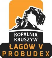 PROBUDEX LOGO 1